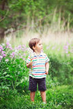 Portrait of a cute funny little boy toddler standing in the forest field meadow with dandelion flowers in hands. And blowing them on a bright summer day, summer Stock Images