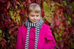 Cute girl in the autumn park Royalty Free Stock Photo
