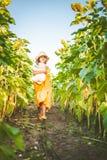 Portrait of cute girl in sunflowers field Stock Image