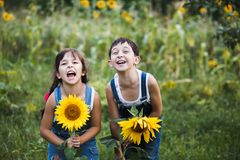 Portrait of cute girls hiding behind sunflowers. On sunny day Royalty Free Stock Photography