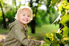 Portrait of cute happy little boy having fun in summer park after rain. Active outdoors game for little children Stock Photos