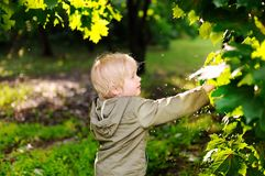 Portrait of cute happy little boy having fun in summer park after rain. Active outdoors game for little children stock photography