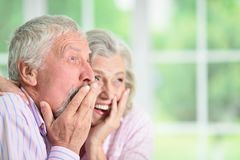 Portrait of cute happy senior couple at home royalty free stock photo