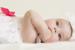 Portrait of Cute Infant Caucasian Female Child. Against White. Horizontal Image Stock Photography