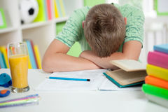 Portrait of cute lad sleeping schoolboy Royalty Free Stock Photo