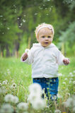 Portrait of a cute little baby Stock Images