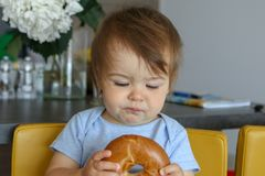 Portrait of cute little baby boy holding bagel in his hands and looking at it sceptically with funny face expression. Tasting bread for the first time. Close royalty free stock image