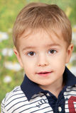 Portrait of cute little boy Stock Photo