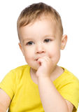 Portrait of a cute little boy Royalty Free Stock Photos