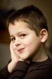 Portrait of a cute little boy. With a mischievous expression on his face and his hands pressed to the side of his face. He has brown hair and brown eyes stock images