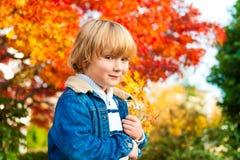 Portrait of a cute little boy Stock Images
