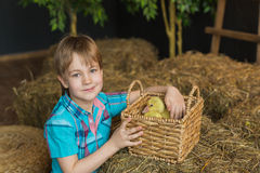 Portrait of a cute little boy with basket with goslings Stock Photo