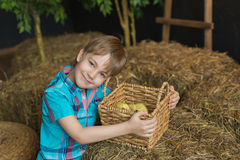 Portrait of cute little boy with basket with a goslings in a farm Stock Photo