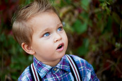 Portrait of cute little boy with big blue eyes and a stylish hairstyle, suspenders   plaid shirt . Memories  childh Stock Photography