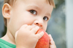 Portrait of a cute little boy biting apple Stock Photos