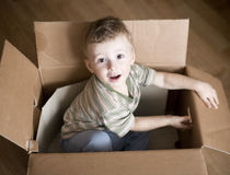 Portrait of cute little boy in carton box Royalty Free Stock Image