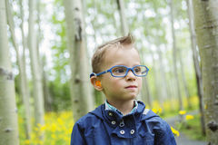 Portrait of cute little boy child outdoors on the Royalty Free Stock Photo