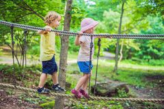 Portrait of cute little boy and girl walk on a rope bridge in an adventure rope park.  stock photo