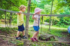 Portrait of cute little boy and girl walk on a rope bridge in an adventure rope park.  stock photos