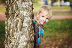 Portrait Cute little boy in a knitted sweater is playing  behind a tree in autumn park,  play at hide-and-seek.  Royalty Free Stock Images