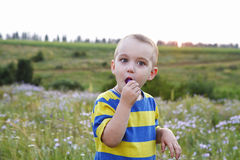 Portrait of a cute little boy on nature Royalty Free Stock Image
