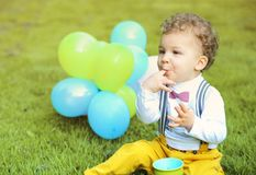 Cute little boy plays in the park. Portrait of cute little boy plays in the park Stock Photo