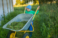Portrait of a cute little boy pushes a wheelbarrow. In a country home Stock Photo
