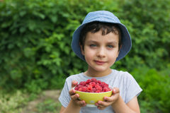 Portrait of a cute little boy with a raspberries in a garden Royalty Free Stock Photography