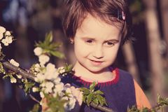 Portrait of cute little child girl near the blossomed tree. Conc Stock Photos