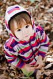 Portrait of cute little girl. Autumn portrait of cute little girl Stock Photography
