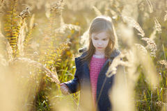 Portrait of a cute little girl on autunm day Stock Images