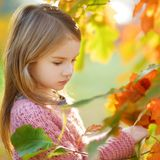 Portrait of a cute little girl on autunm day Stock Image