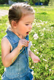 Portrait of cute little girl blowing on dandelion. On summer day Stock Photos