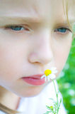 Portrait of a cute little girl with daisy Royalty Free Stock Photos