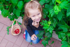 Portrait cute little girl in the garden with Stock Photography