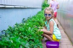 Portrait of cute little girl sitting in the garden Stock Photo
