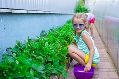 Portrait of cute little girl sitting in the garden Stock Image