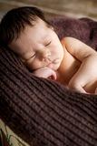 Portrait cute newborn baby sleeping Royalty Free Stock Images