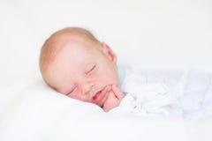 Portrait of a cute newborn sleeping baby Stock Image