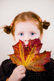 Portrait of cute redhead girl. Portrait of redhead girl over background with maple leave Stock Photography