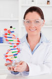 Portrait of a cute scientist showing the dna. Double helix model stock photo