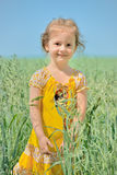 Portrait of cute smiling little girl in summer field Royalty Free Stock Photography