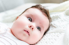 Portrait of cute sweet little newborn baby girl Stock Image