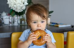 Portrait of cute thoughtful baby boy with stylish haircut holding and eating big bagel with open mouth. Sitting on yellow chair at home kitchen Stock Photo