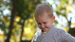 Portrait of cute toddler boy posing in autumn park stock video