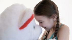 Portrait of a cute white girl with pigtails hugging with a big teddy bear on a white background in the studio.  stock footage