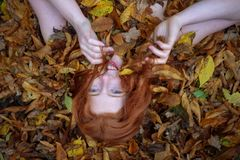 Portrait of a cute young lovely girl, covered with red and orange autumnal leaves. Beautiful woman lying on autumn leaves royalty free stock photography