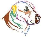 Portrait décoratif coloré de vecto asiatique central de Dog de berger Photos stock
