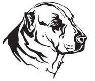 Portrait décoratif d'illustr asiatique central de vecteur de Dog de berger Illustration Stock