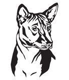 Portrait décoratif d'illustration de vecteur de Basenji de chien Illustration Libre de Droits